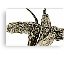 Crumpled Chili Canvas Print