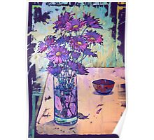 purple asters Poster