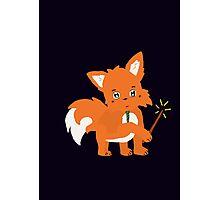 Magical Fox Photographic Print