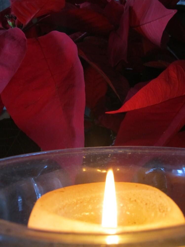 Christmas - Hanukkah - Kwanzaa - light in the world by PtoVallartaMex