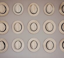 Fifteen Hats by phil decocco