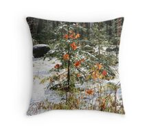 Autumn Winter Muskoka Throw Pillow