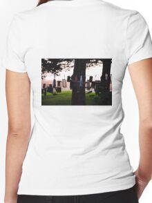 Aviary Smorgasborg  Women's Fitted V-Neck T-Shirt