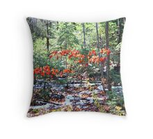 Autumn Winter Muskoka 2 Throw Pillow