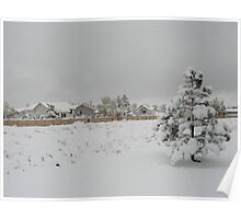 Beautiful Snow Landscape Poster