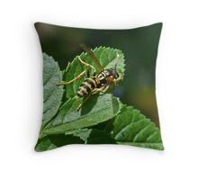 Yellow Wasp Throw Pillow