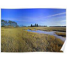 Salt marsh:  Ipswich, Mass Poster