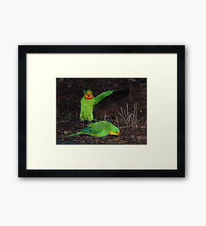 The Carnage Continues Framed Print
