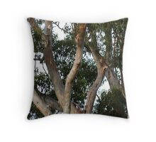 Gumtree Branches Throw Pillow