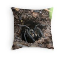 Wolf Spider - welcome to my home Throw Pillow