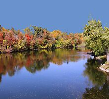 Fall in Indiana by Wayne George