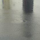 Rainy Day Asphalt  by Jane Underwood