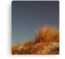 Night, Sand-Dune Grass Canvas Print
