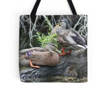 The Grey Pair Tote Bag
