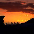 north head manly - city in palm of a rock by miroslava