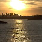 north head manly - summer sunset by miroslava
