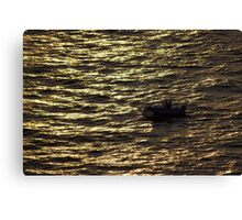 North Head Manly - In sunset rays Canvas Print