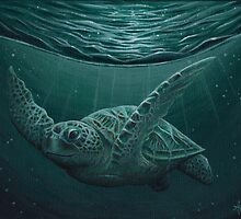 """Eclipse"" - Green Sea Turtle, Acrylic by Amber Marine"