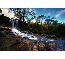 Earth Song Photographic Print