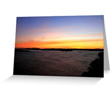 north head manly - golden sea Greeting Card