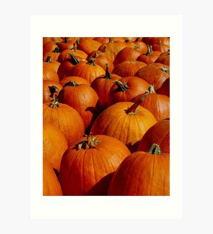 Pumpkins Galore Art Print
