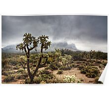 A Foggy Arizona Morning  Poster