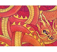Coiled Dragon Photographic Print