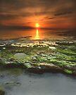 """Greenfield Sunrise"" ∞ Vincentia, NSW - Australia by Jason Asher"