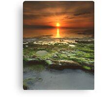 """Greenfield Sunrise"" ∞ Vincentia, NSW - Australia Canvas Print"
