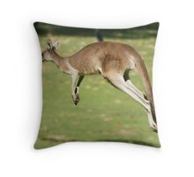 In Flight Throw Pillow
