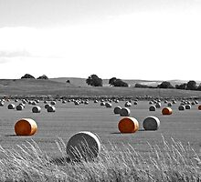 Hay-bales by Epicurian