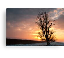 Winter,so lonely cold! But the sun will be... Canvas Print