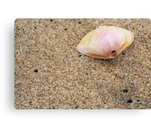 beachy keen Canvas Print