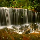 Lower Somersby Falls .. the lateral view by Michael Matthews