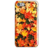 Autumn carpet iPhone Case/Skin