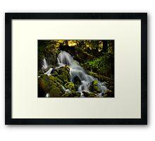 Cold Springs Falls Framed Print
