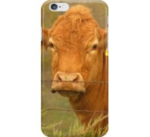 A Cow Named, Sioux iPhone Case/Skin