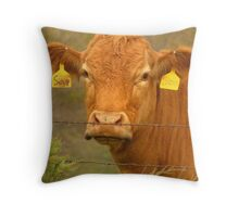 A Cow Named, Sioux Throw Pillow