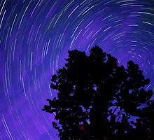 Ohio Night Sky - Star Trails by Gregory Ballos | gregoryballosphoto.com