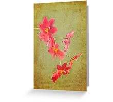 Verdant Orchid Greeting Card