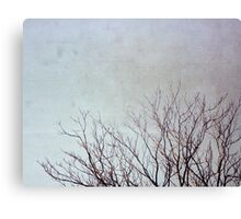 Dancing Branches Canvas Print