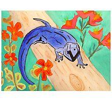 Blue Gecko Photographic Print