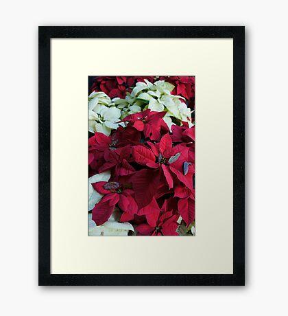 Festive Flowers Framed Print