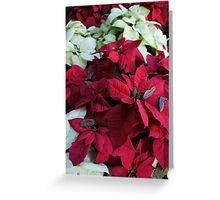Festive Flowers Greeting Card