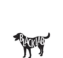 Black Lab by gstrehlow2011