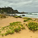 Flowers In The Sand by Terry Everson