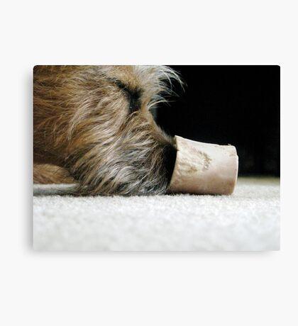 Bone Tired!  Canvas Print