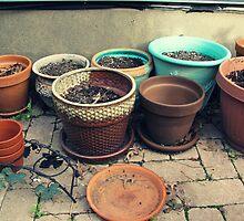 Lifeless Pots by Ashli Amabile