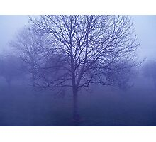 In the bleak Mid-Winter. Photographic Print