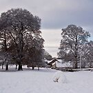 Snow on the Village Green by Tom Gomez